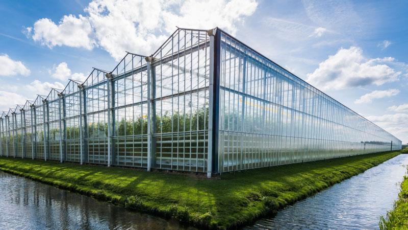 Glastuinbouw kassen